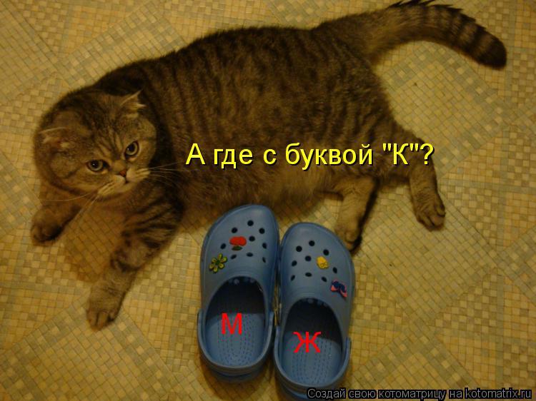 "Котоматрица: М Ж А где с буквой ""К""?"