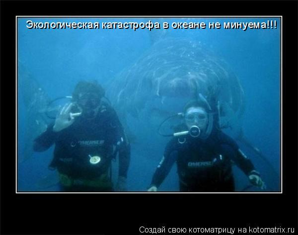 Котоматрица: Экологическая катастрофа в океане не минуема!!!