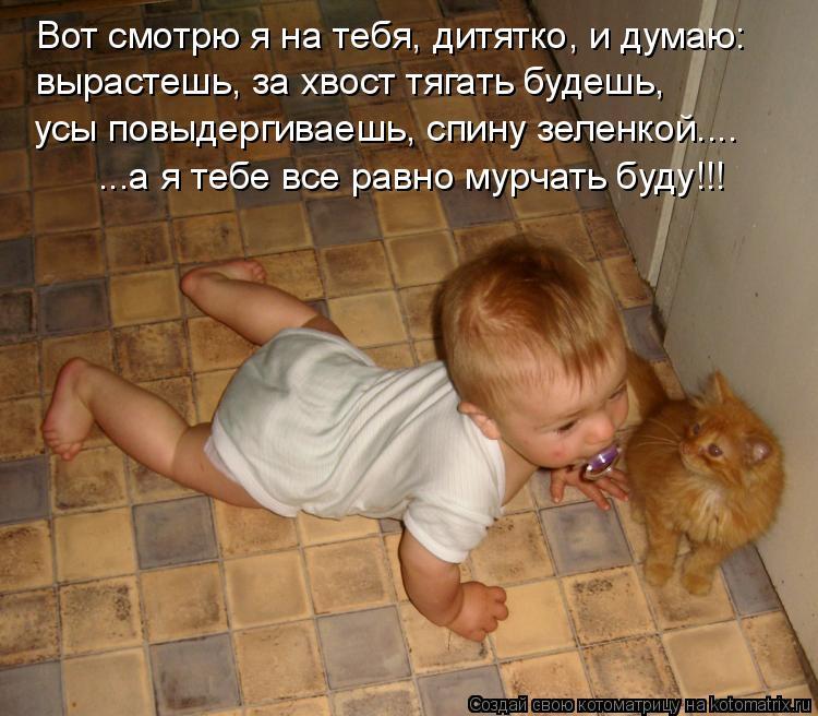Котоматрица: Вот смотрю я на тебя, дитятко, и думаю: вырастешь, за хвост тягать будешь, усы повыдергиваешь, спину зеленкой.... ...а я тебе все равно мурчать б