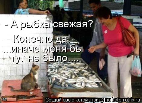 Котоматрица: - А рыбка свежая?  тут не было.... - Конечно да! ...иначе меня бы