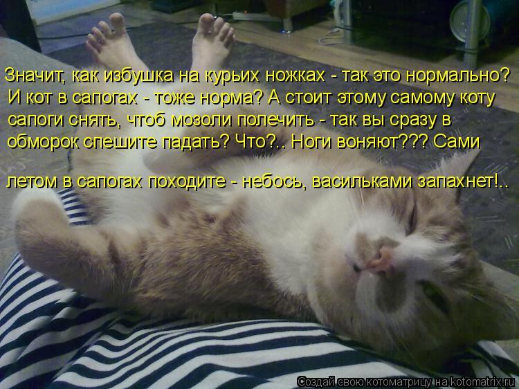 Котоматрица: Значит, как избушка на курьих ножках - так это нормально? И кот в сапогах - тоже норма? А стоит этому самому коту сапоги снять, чтоб мозоли пол