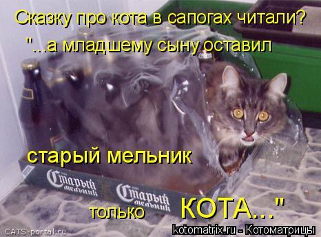 """Котоматрица: Сказку про кота в сапогах читали? """"...а младшему сыну оставил  старый мельник  только  КОТА..."""""""