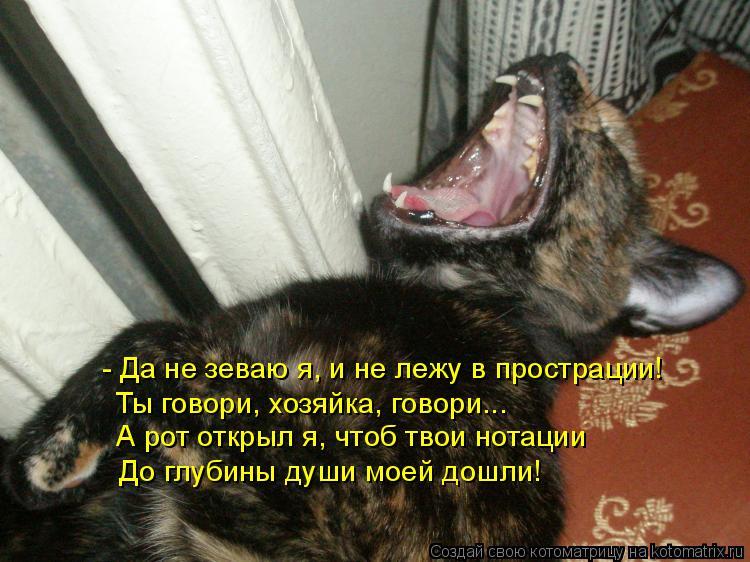 Котоматрица: - Да не зеваю я, и не лежу в прострации!  Ты говори, хозяйка, говори...  А рот открыл я, чтоб твои нотации  До глубины души моей дошли!