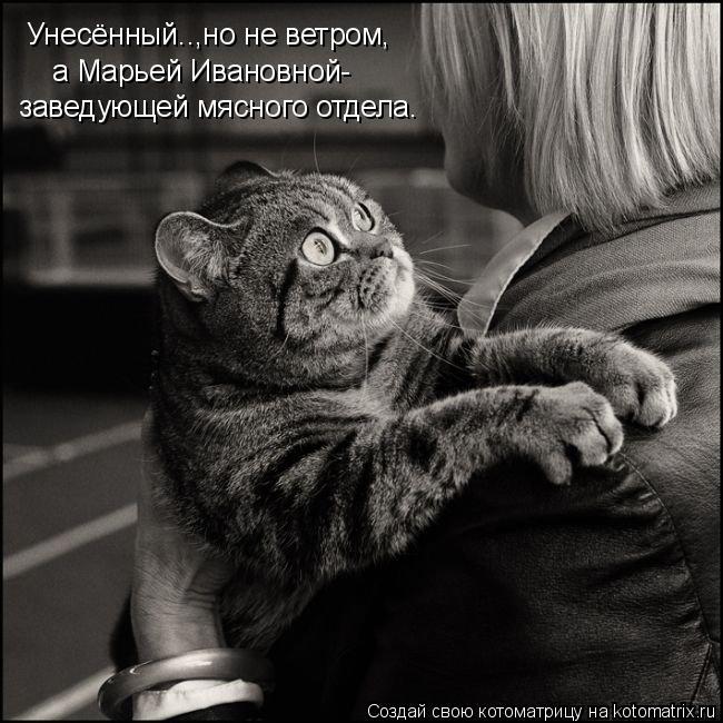 Котоматрица: Унесённый..,но не ветром, а Марьей Ивановной- заведующей мясного отдела.