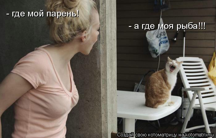 Котоматрица: - где мой парень! - а где моя рыба!!!