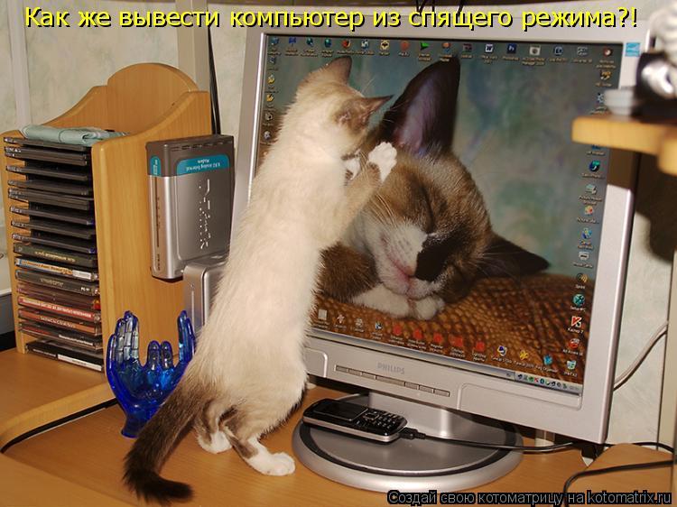 Котоматрица: Как же вывести компьютер из спящего режима?!