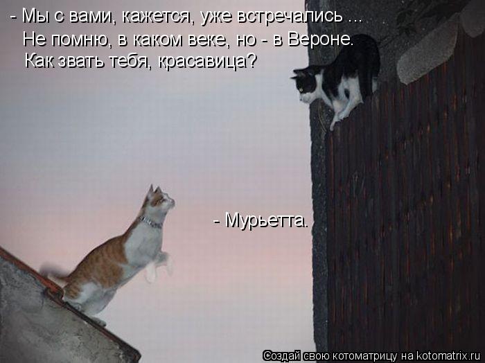 http://kotomatrix.ru/images/lolz/2010/07/09/624660.jpg