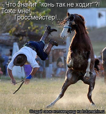 http://kotomatrix.ru/images/lolz/2010/07/09/625112.jpg