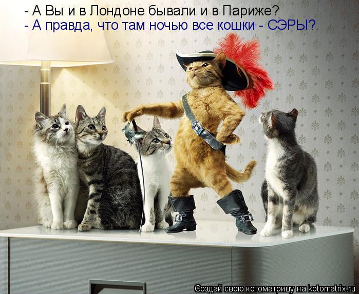 Котоматрица: - А Вы и в Лондоне бывали и в Париже? - А правда, что там ночью все кошки - СЭРЫ?