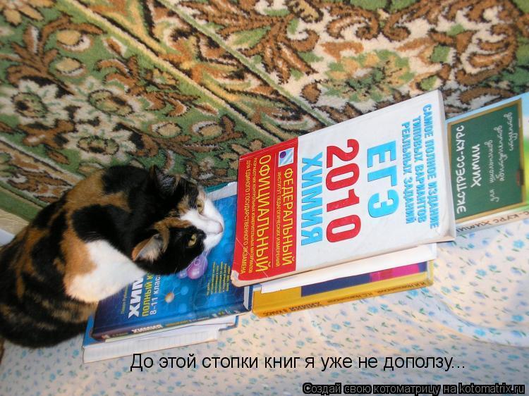 Котоматрица: До этой стопки книг я уже не доползу...