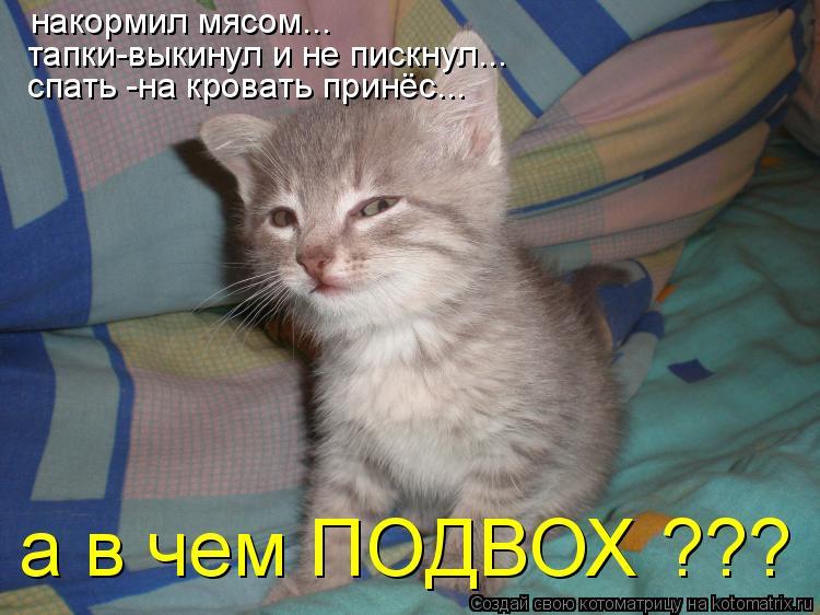 Котоматрица: накормил мясом... тапки-выкинул и не пискнул... спать -на кровать принёс... а в чем ПОДВОХ ???