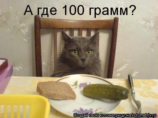 Котоматрица: А где 100 грамм?