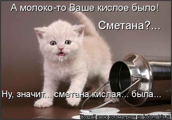 Котоматрица: А молоко-то Ваше кислое было! Сметана?... Ну, значит... сметана кислая... была...