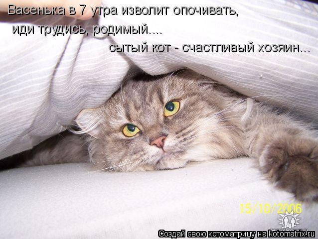 Котоматрица: Васенька в 7 утра изволит опочивать,  иди трудись, родимый.... сытый кот - счастливый хозяин...