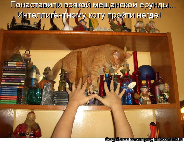 Понаставили всякой мещанской ерунды... Интеллигентному коту пройти не
