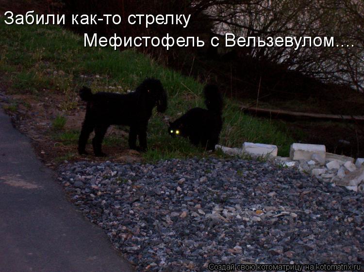 http://kotomatrix.ru/images/lolz/2010/07/12/627569.jpg