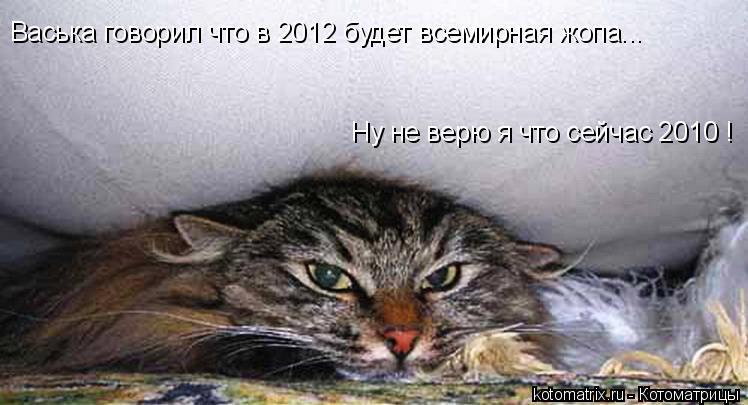 Котоматрица: Васька говорил что в 2012 будет всемирная жопа... Ну не верю я что сейчас 2010 !