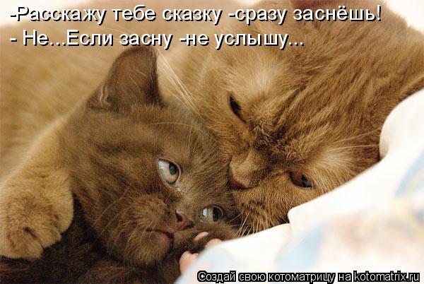 Котоматрица: -Расскажу тебе сказку -сразу заснёшь! - Не...Если засну -не услышу...
