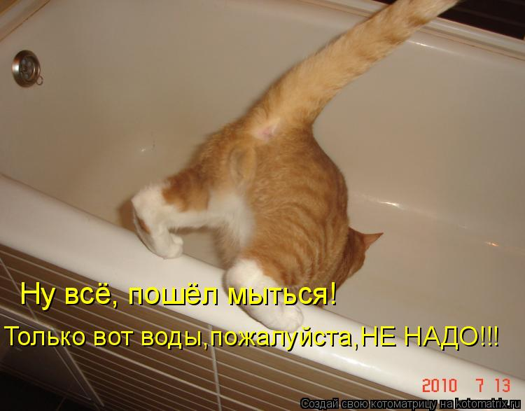 Котоматрица: Ну всё, пошёл мыться! Только вот воды,пожалуйста,НЕ НАДО!!!