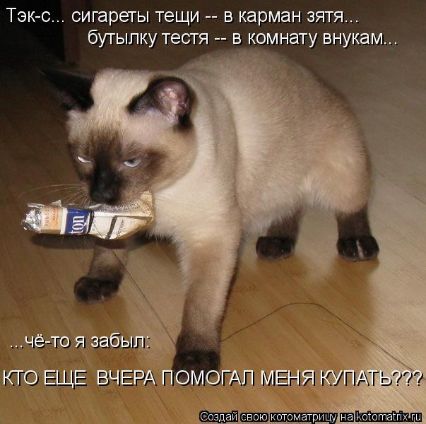 Котоматрица: Тэк-с... сигареты тещи -- в карман зятя... бутылку тестя -- в комнату внукам... ...чё-то я забыл:  КТО ЕЩЕ  ВЧЕРА ПОМОГАЛ МЕНЯ КУПАТЬ???