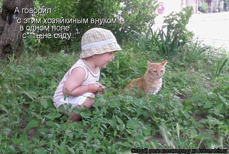 """Котоматрица: А говорил -  """"с этим хозяйкиным внуком в одном поле с**ть не сяду..."""""""