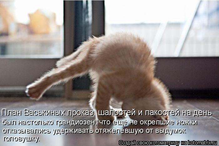 Котоматрица: План Васькиных проказ, шалостей и пакостей на день был настолько грандиозен, что ещё не окрепшие ножки отказывались удерживать отяжелевшу