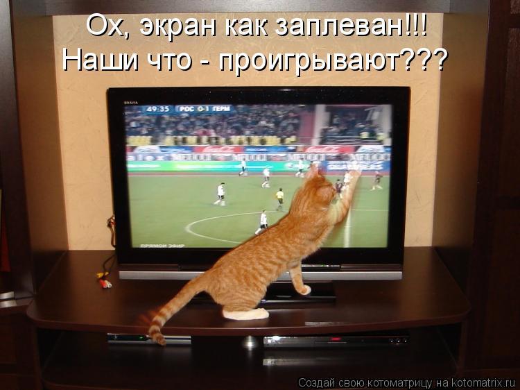 Котоматрица: Ох, экран как заплеван!!! Наши что - проигрывают???