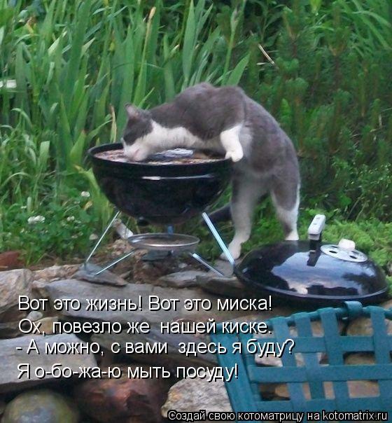 Как сделать чтобы киска намокла фото 355-488