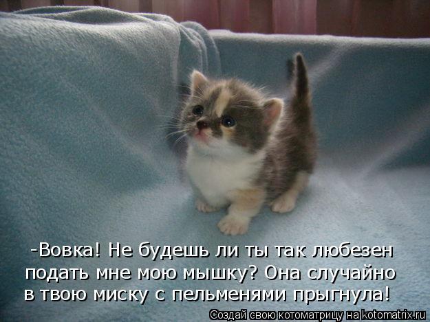 -Вовка! Не будешь ли ты так любезен подать мне мою мышку? Онаслучайно