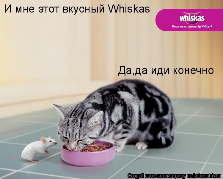 Котоматрица: И мне этот вкусный Whiskas Да,да иди конечно