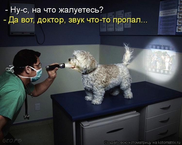 - Ну-с, на что жалуетесь? - Да вот, доктор, звук что-то пропал...
