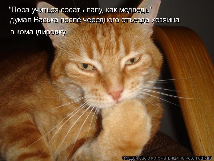 Смотреть русское порно новинки