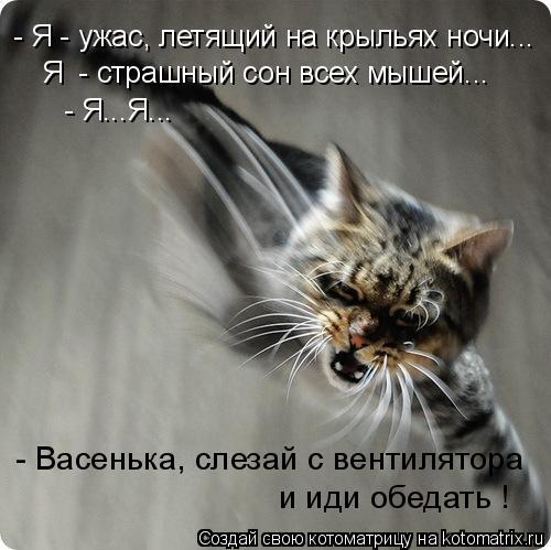 Я  - страшный сон всех мышей... - Я - ужас, летящий на крыльях ночи... - Я...Я... - Васенька, слезай с вентилятора  и иди обедать !