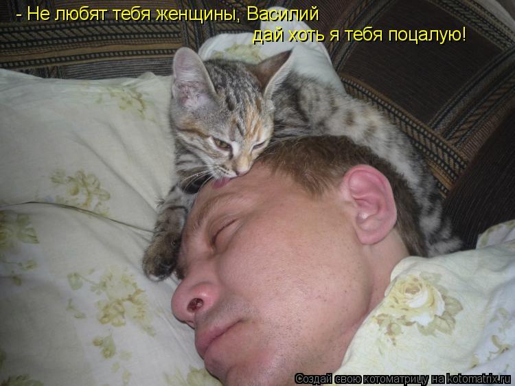Котоматрица: - Не любят тебя женщины, Василий дай хоть я тебя поцалую!
