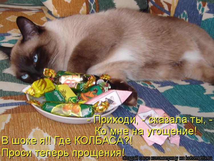 Котоматрица: - Приходи, - сказала ты, - Ко мне на угощение! В шоке я!! Где КОЛБАСА?! Проси теперь прощения!