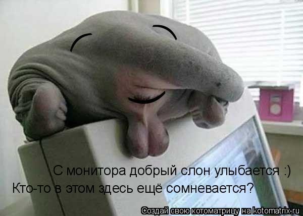 Котоматрица: ( ) ) С монитора добрый слон улыбается :) Кто-то в этом здесь ещё сомневается?