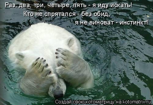 Котоматрица: Раз, два, три, четыре, пять - я иду искать! Кто не спрятался - без обид,  я не виноват - инстинкт!