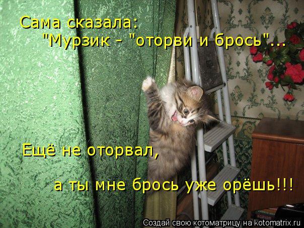 """Котоматрица: Сама сказала:  """"Мурзик - """"оторви и брось""""... Ещё не оторвал, а ты мне брось уже орёшь!!!"""
