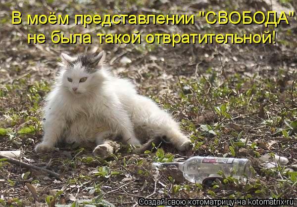 """Котоматрица: В моём представлении """"СВОБОДА""""  не была такой отвратительной!"""