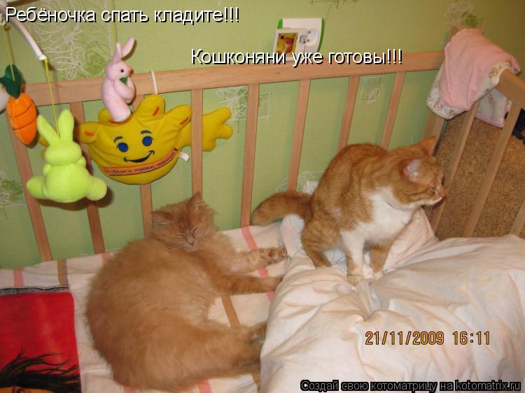 Котоматрица: Ребёночка спать кладите!!! Кошконяни уже готовы!!!