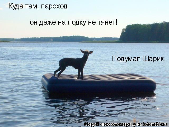 Котоматрица: Куда там, пароход он даже на лодку не тянет! Подумал Шарик.