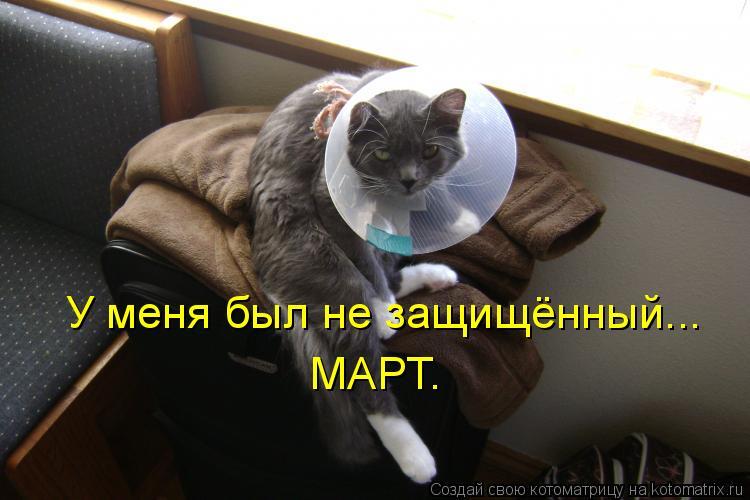 Котоматрица: У меня был не защищённый... МАРТ.