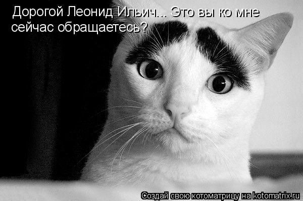 Дорогой Леонид Ильич... Это вы ко мне сейчас обращаетесь?