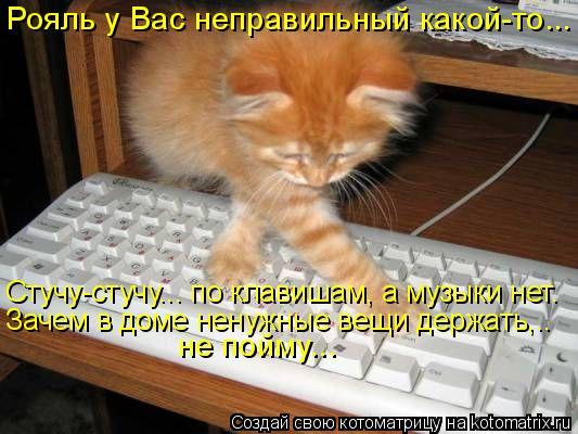 Котоматрица: Рояль у Вас неправильный какой-то...  не пойму...  Зачем в доме ненужные вещи держать,..  Стучу-стучу... по клавишам, а музыки нет.