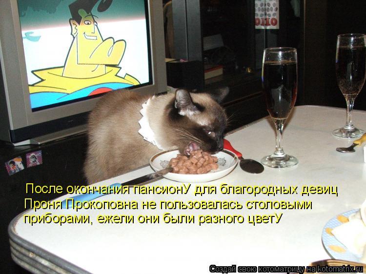После окончания пансионУ для благородных девиц Проня Прокоповна не пол