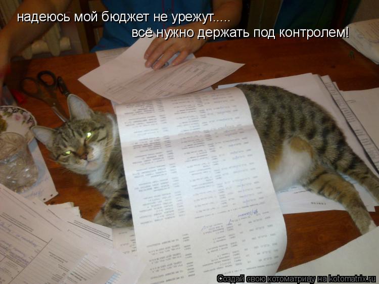 Котоматрица: надеюсь мой бюджет не урежут..... всё нужно держать под контролем!