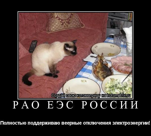 Котоматрица: РАО ЕЭС России Полностью поддерживаю веерные отключения электроэнергии!