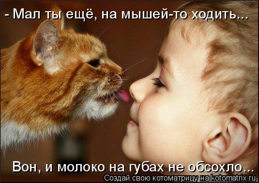 Котоматрица: - Мал ты ещё, на мышей-то ходить... Вон, и молоко на губах не обсохло...