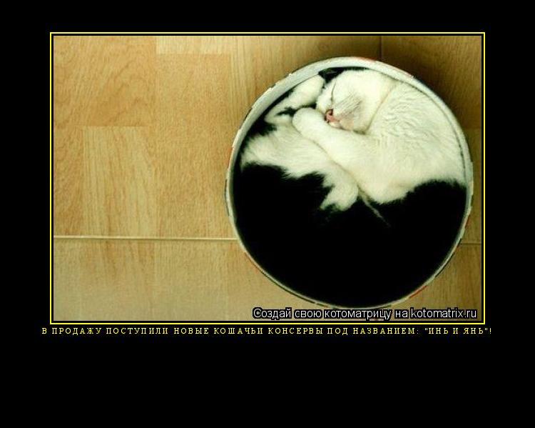 """Котоматрица: В продажу поступили новые кошачьи консервы под названием: """"Инь и Янь""""!"""