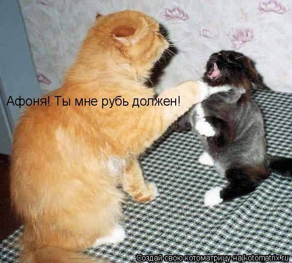 Котоматрица: Афоня! Ты мне рубь должен!